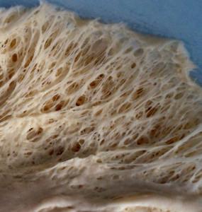 La maglia glutinica nella pizza