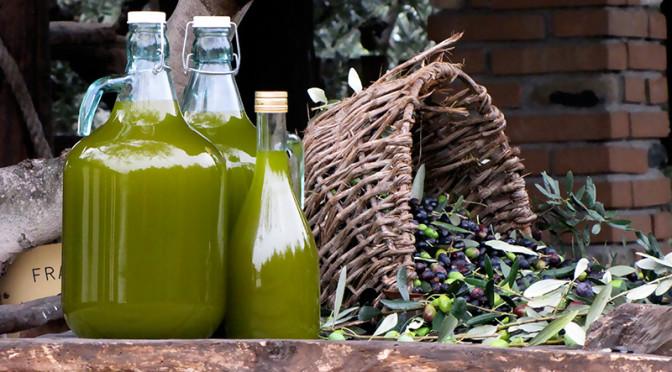 Come si fa l'olio di oliva