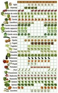 Quali Verdure Usare Per Una Buona Pizza
