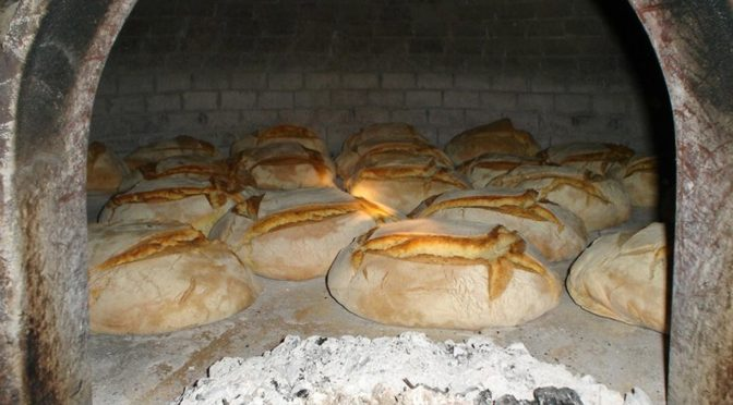 How to Cooking In A Wood oven